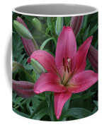 Pink Lilly Coffee Mug