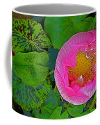 Pink Lotus In Backyard Of Home In Bangkok-thailand. Coffee Mug