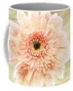 1 Pink Painterly Gerber Daisy Coffee Mug