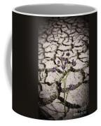 Plant Growing Through Dirt Crack During Drought   Coffee Mug