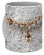 Plume Moth Coffee Mug