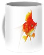 Poisson Rouge Queue De Voile Carassius Coffee Mug