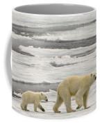 Polar Bear With Cub Coffee Mug