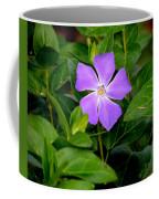 Pretty Purple Pinwheel Coffee Mug