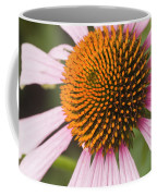 Purple Cone Flower Echinacea Coffee Mug