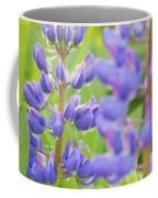 Purple Lupine Flowers Coffee Mug
