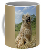 Pyrenean Sheepdog Coffee Mug