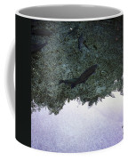 Rainbow Trout Coffee Mug by Les Cunliffe