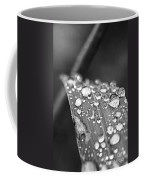 Raindrops On Grass Blade Coffee Mug