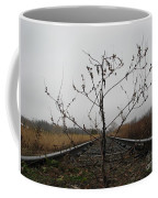 Rebirth Coffee Mug