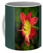 Red And Yellow Lily Coffee Mug