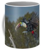 Red-billed Toucan Coffee Mug
