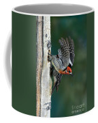 Red-breasted Sapsucker Coffee Mug