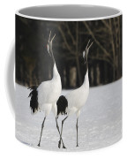Red-crowned Cranes Courting Coffee Mug