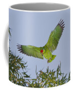 Red-crowned Parrot Coffee Mug