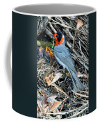 Red-faced Warbler At Nest With Young Coffee Mug