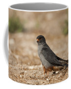 Red Footed Falcon Falco Vespertinus Coffee Mug