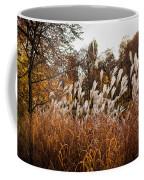 Reeds Highlighted By The Sun Coffee Mug