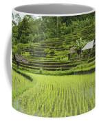 Rice Fields In Bali Indonesia Coffee Mug