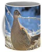 Ring Neck Hen Coffee Mug