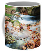 River Flowing Under Stone Bridge Coffee Mug