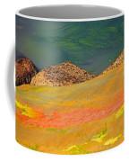 Rock Art In Oregon Coffee Mug