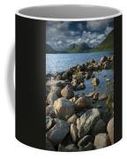 Rocky Shoreline In Acadia National Park Coffee Mug