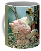 Roseate Spoonbill Adult With Young Coffee Mug