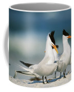 Royal Terns Coffee Mug