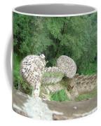 Rud-khan Castle Coffee Mug