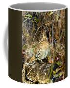 Ruffed Grouse On Drumming Log Coffee Mug