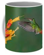 Rufous-tailed Hummer Coffee Mug