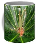 Sago Palm Coffee Mug