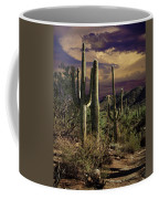 Saguaro Cactuses In Saguaro National Park Coffee Mug