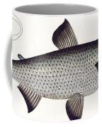 Salmon Coffee Mug
