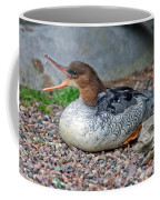Scaly-sided Merganser Hen Coffee Mug
