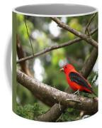 Scarlet Tanager Coffee Mug