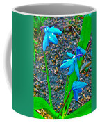Scilla In New Maiden Cemetery In Moscow-russia  Coffee Mug