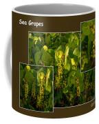 Sea Grapes Coffee Mug