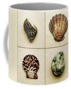 Seashell Composite Coffee Mug