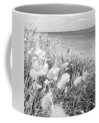 Seaside Grass Coffee Mug