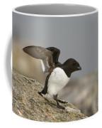 Sitting Dovekie Coffee Mug