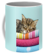 Sleepy Kitten Coffee Mug