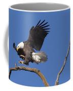 Smooth Landing 5 Coffee Mug