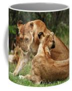 Sociable Lions   Coffee Mug