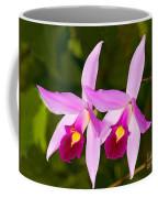 Sophronitis Orchid Coffee Mug