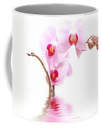 Spa Flowers Coffee Mug
