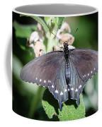 Spicebush Swallowtail Papilio Troilus Coffee Mug