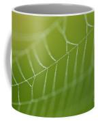 Spider Web With Dew Drops  Coffee Mug