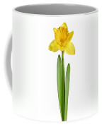 Spring Yellow Daffodil Coffee Mug